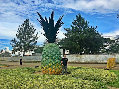 Things to do in Manolo Fortich Bukidnon