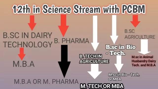 With 12th PCBM (Physics, Chemistry, Biology, Maths)