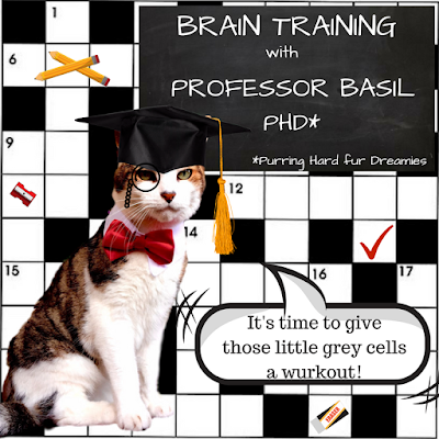 Brain Training with Cats ©BionicBasil®