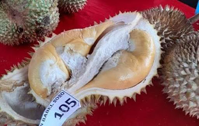 Durian Super Tembaga asal Bangka