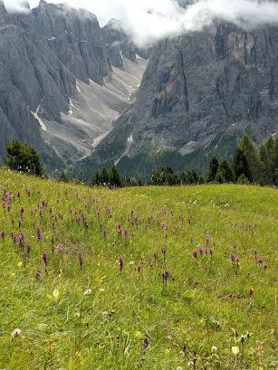 A view from trail 8 above Colfosco toward Val de Mezdi.