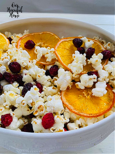 dried cranberry orange slices air popped popcorn