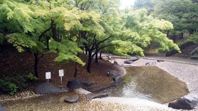 一本杉公園の池