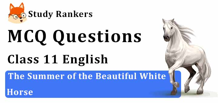 Ch 1 The Summer of the Beautiful White Horse Summary Class 11 Snapshots by William Saroyan