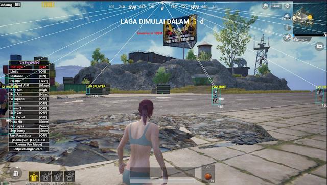 Radi 5.0 ENGLISH NEW! PUBG MOBILE Tencent Gaming Buddy Aimbot Legit, Wallhack, No Recoil, ESP