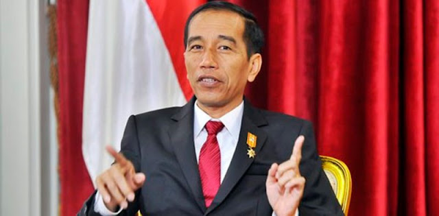 Rico Marbun: Sulit Membayangkan Joko Widodo Ambil Posisi Ketua Umum PDIP