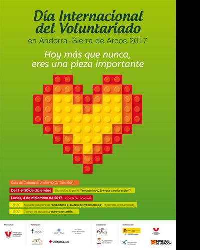 Voluntariado, Energía para la acción