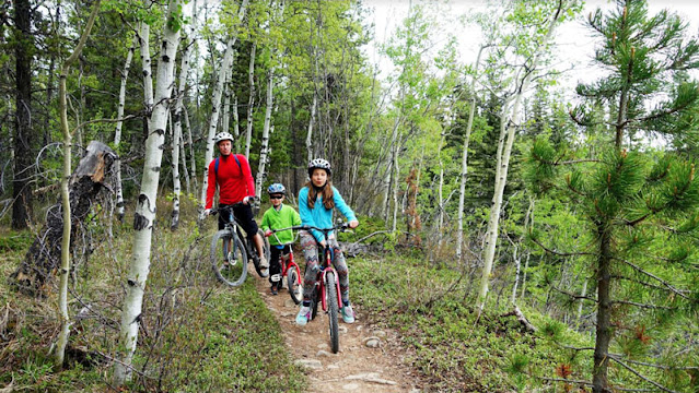 Father and kids biking on mountain trail