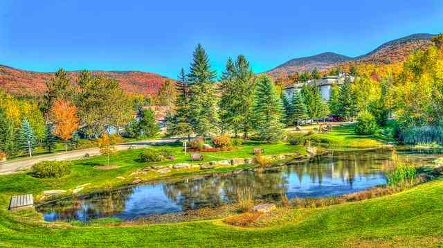 10 best places to visit in vermont, stow ohio, stowe vermont hotels, stowe vt restaurants, stow ma, stowe snow report, stowed, stowe weather, stowe ski resort, stowe in vermont, stowe vermont, stowe, stowe mountain resort, stowed away, stow away, stowe vt weather, stowe mountain lodge, vermont, vermont country store, vermont burlington, vermont university, vermont map, vermont capital, vermont weather, vermont killington, vermont dmv, vermont teddy bear, vermont zillow, vermont digger, vermont federal credit union, vermont breweries, is vermont a state, vermont state, vermont which state, vermont basketball, vermont hotels, vermont health connect, vermont news, vermont population, vermont lottery, vermont killington weather, vermont skiing, vermont jobs, vermont colleges, vermont flannel, vermont real estate, vermont fish and wildlife, vermont law school, vermont airport, vermont governor, vermont secretary of state, vermont houses for sale, vermont lake monsters, vermont fall, vermont abbreviation, vermont time, vermont maple syrup, vermont jay peak, vermont mutual, vermont technical college, vermont in fall, vermont senator, vermont zip code, vermont resorts, vermont department of labor, vermont electric coop, vermont department of taxes, vermont legislature, vermont flag, vermont bed and breakfast, vermont for christmas, vermont academy, vermont judiciary, vermont city, vermont vacation, vermont gage, vermont license plate, vermont in us, vermont in usa, vermont usa, vermont facts, vermont office of child support, vermont curry, vermont nut free, vermont creamery, vermont and wilshire, vermont studio center, vermont road conditions, vermont information processing, vermont hunting season, vermont board of nursing, vermont public radio, vermont college of fine arts, vermont obituaries, vermont, vermont catamounts, vermont in winter, vermont winter, vermont service center, vermont logo, vermont 7 days, vermont for rent, vermont bike tours, vermont tourism, vermont w