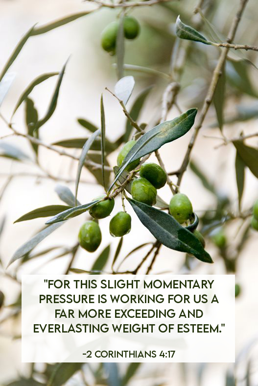 These slight momentary pressures are working for us. - 2 Corinthians 4:17 - encouraging Bible verses | Land of Honey