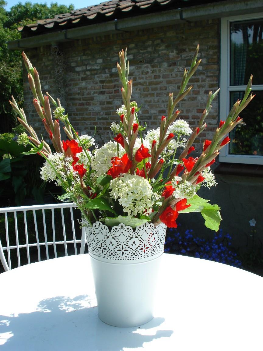 Afbeeldingen Bloemen Hortensia