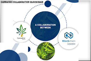 CannaCor and Blockchain Corporation Technology