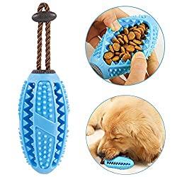 Hundespielzeug Zahnbürsten Stick