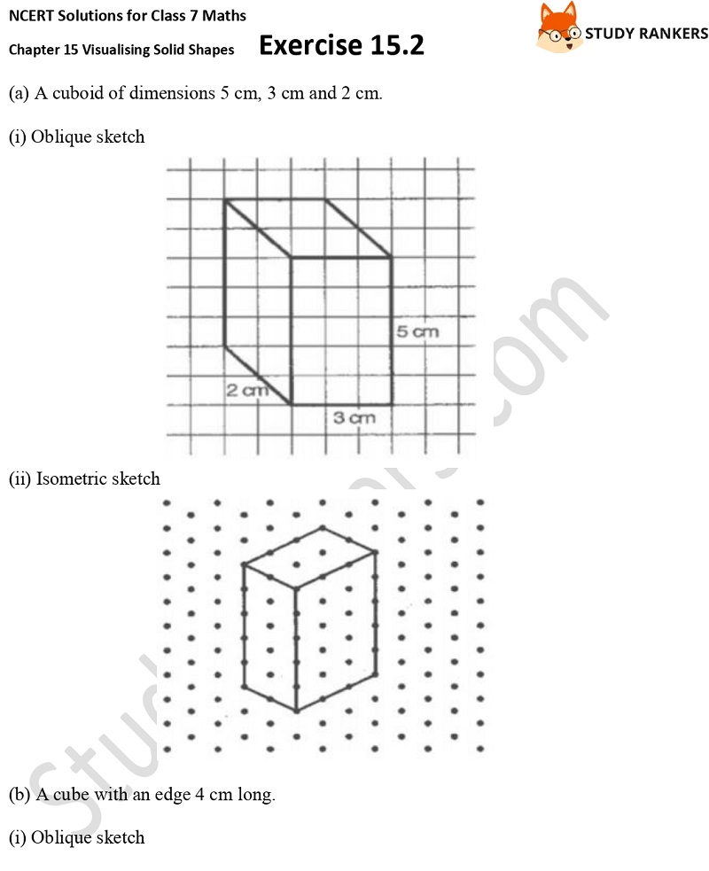 NCERT Solutions for Class 7 Maths Chapter 15 Visualising Solid Shapes Exercise 15.2 Part 5