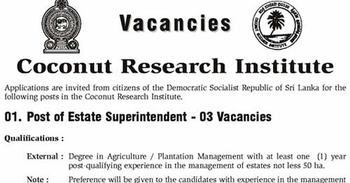 Ai Government Job Vacancies Coconut Research Institute
