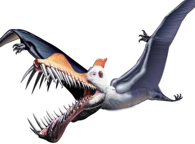 Paleontólogos descobrem Pterossauro gigante com dentes semelhantes a presas