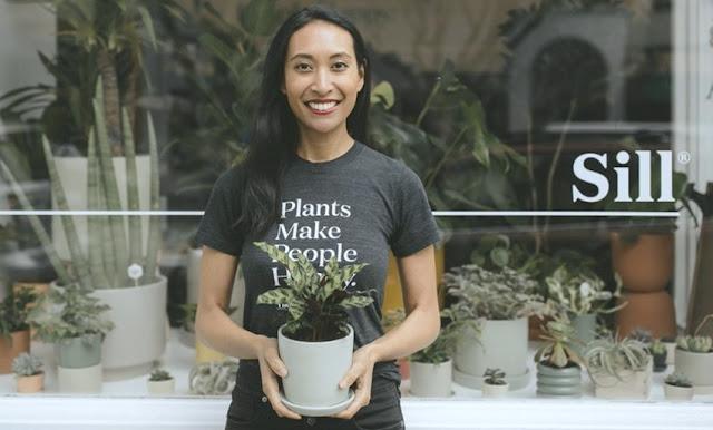 The Sill, tienda online de plantas en Estados Unidos