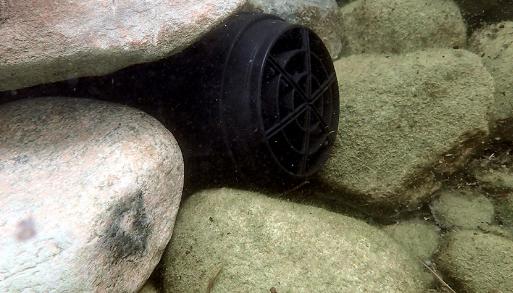 Cara Membuat Air Terjun Aquascape Dengan Power Head untuk Pemula