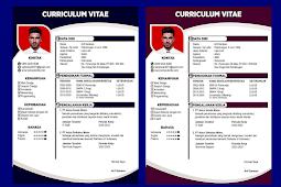 Contoh CV Menarik dan Baik Untuk Lamaran Kerja - Design #4