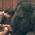 No te pierdas Zoo, una aventura de amistad y amor para toda la familia