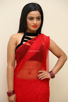 Aasma Syed in Red Saree Sleeveless Black Choli Spicy Pics ~  Exclusive Celebrities Galleries 104.jpg
