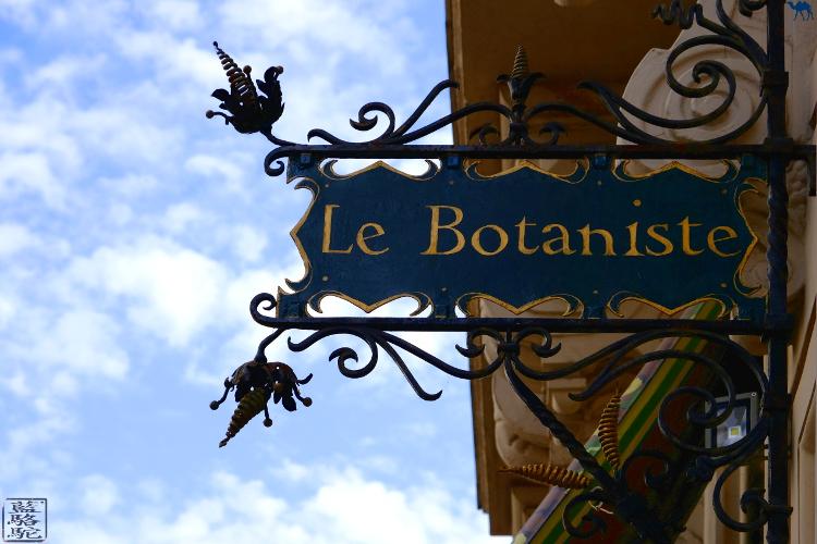 Le Chameau Bleu -  Blog Voyage Restaurant Gand Belgique - Week End en belgique  - Restaurant végan  Le Botaniste à Gand