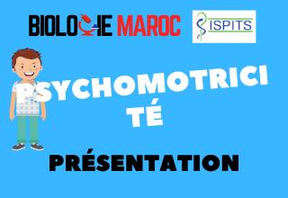 PSYCHOMOTRICITÉ -ISPITS- Présentation générale