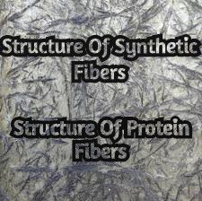 Structure of Protein Fiber