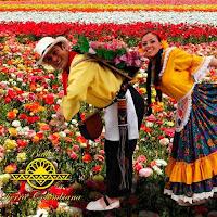 """Ballet Tierra Colombiana """"FERIA DE LAS FLORES"""""""