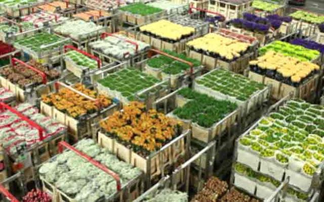 भारत ने प्रमुख कृषि उत्पादों का निर्यात शुरू किया - सरकार