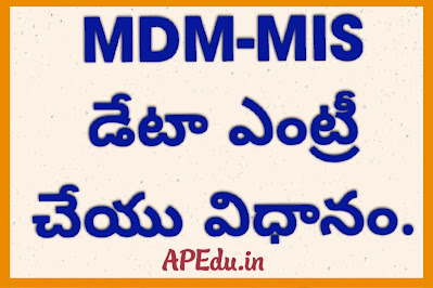 MDM-MIS Online Data Entry Process