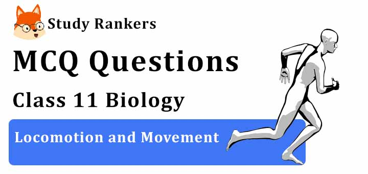 MCQ Questions for Class 11 Biology: Ch 20 Locomotion and Movement