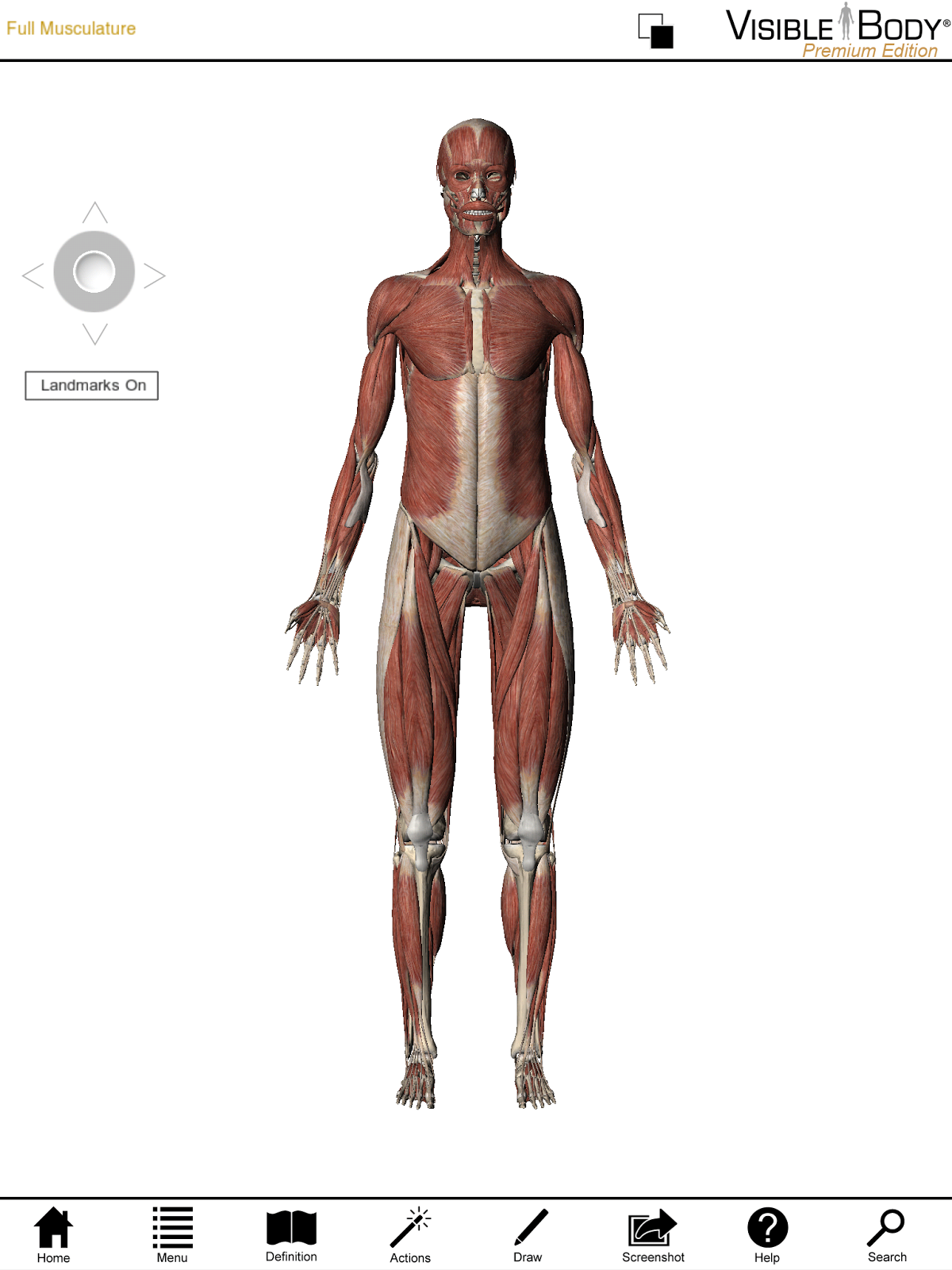 Libraries Blog Introducing Visible Body A New Interactive Database