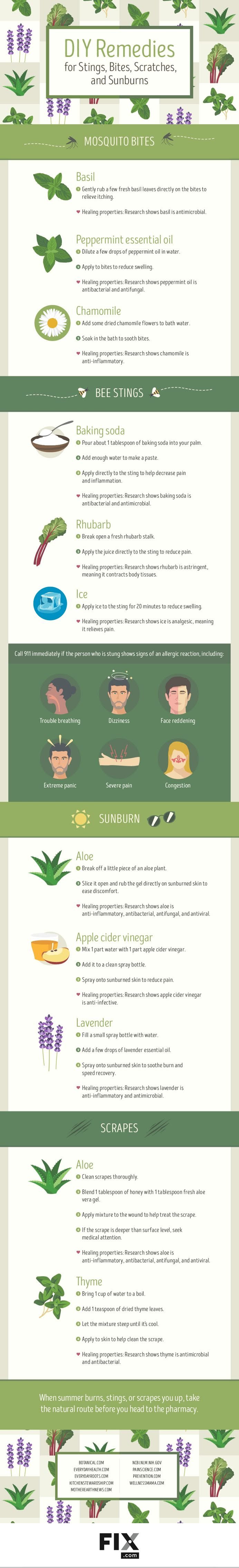 DIY Remedies for Stings, Bites, Scratches, and Sunburns #infographic