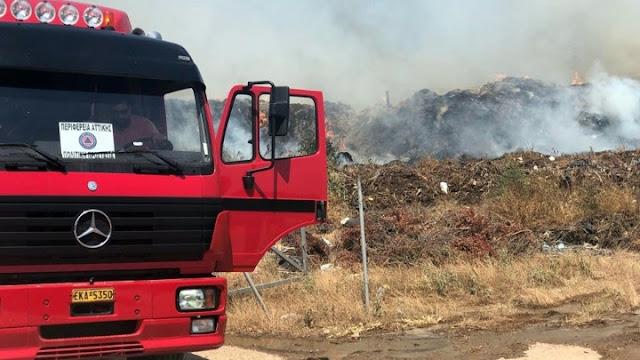 45 πυρκαγιές σε όλη τη χώρα το τελευταίο 24ωρο