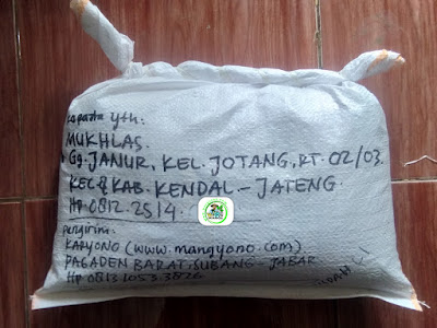 Benih Padi Pesanan   MUKHLAS Kendal, Jateng.   (Setelah di Packing).