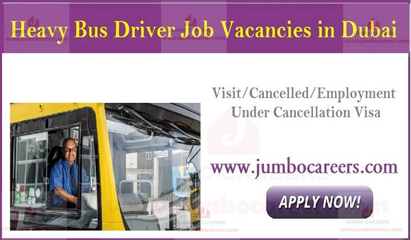 Urgent Heavy bus driver jobs in Dubai, Gulf job openings with salary,