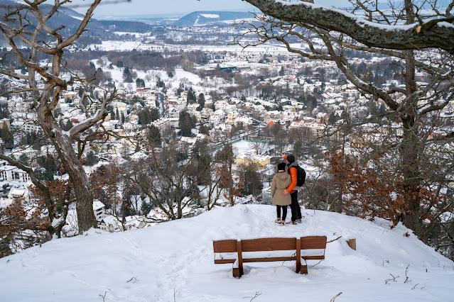 Winterwandern in Bad Harzburg | Kleiner und Großer Burgberg und Besinnungsweg | Baumschwebebahn | Wandern im Harz 10