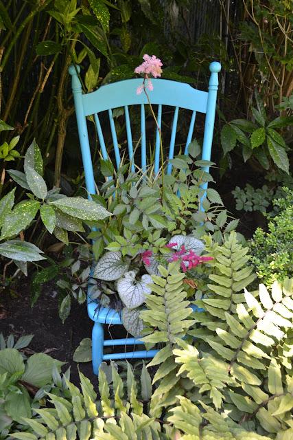 The Outlaw Gardener The Everett Garden Of Steve And