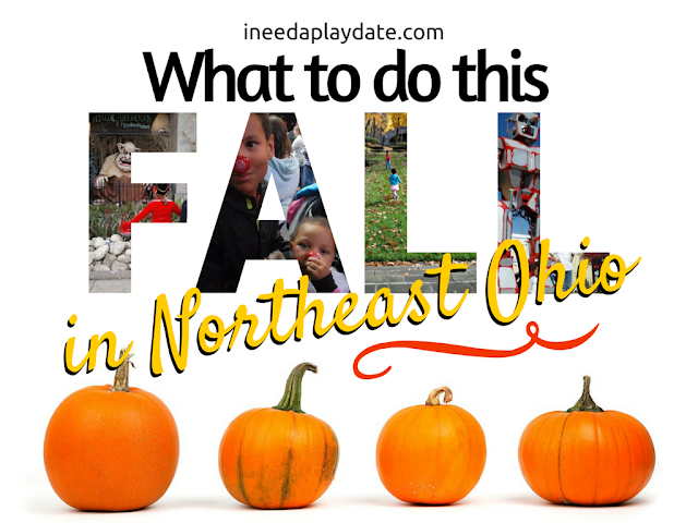 What to do This Fall in Northeast Ohio