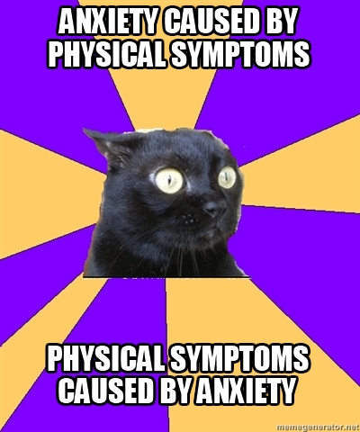 anxiety cat and physical symptoms