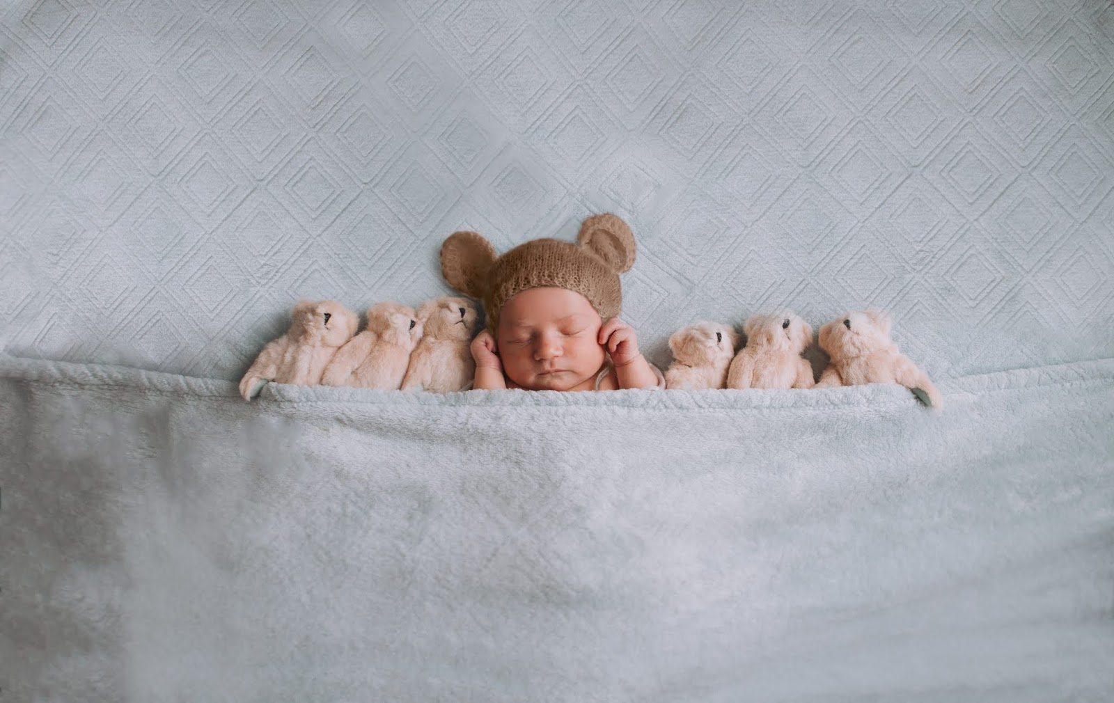 east bay newborn photographers