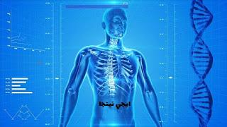 حقائق وغرائب داخل جسم الانسان