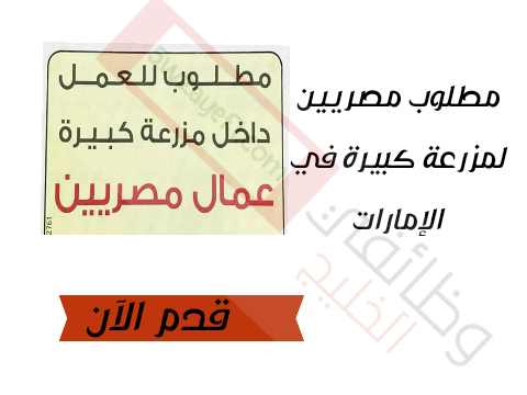 مطلوب مصريين لمزرعة كبيرة في اﻹمارات