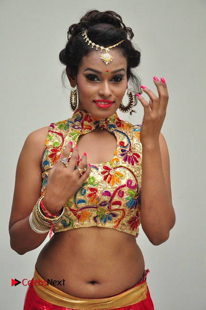 Nisha item girl in a Spicy Chania Choli at Chiranjeevi Birthday