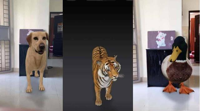 Hewan 3D di Google Search, Begini Cara Menampilkannya