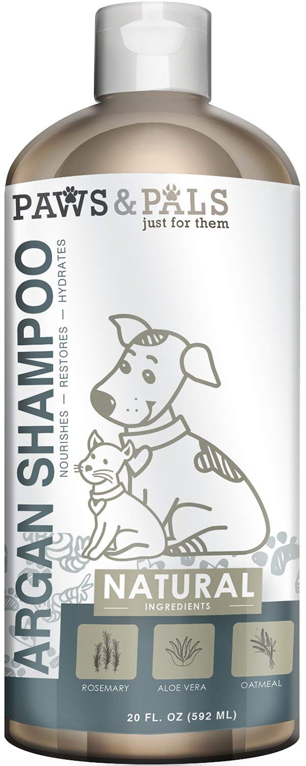 Top 10 Best Shampoo For Dogs in India - Your Ultimate Guide