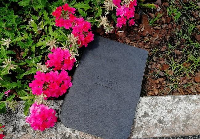 Liseuse dans les fleurs roses.