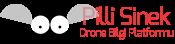 Blog Tanıtımı: Pilli Sinek
