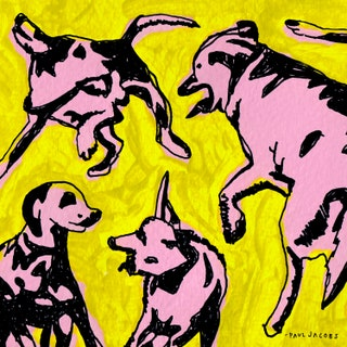 Paul Jacobs - Pink Dogs on the Green Grass Music Album Reviews